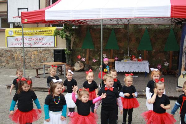31. Piknik rodzinny w Dębniku – maj 2015